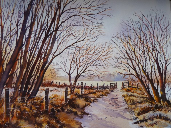 Country Walk In The Winter